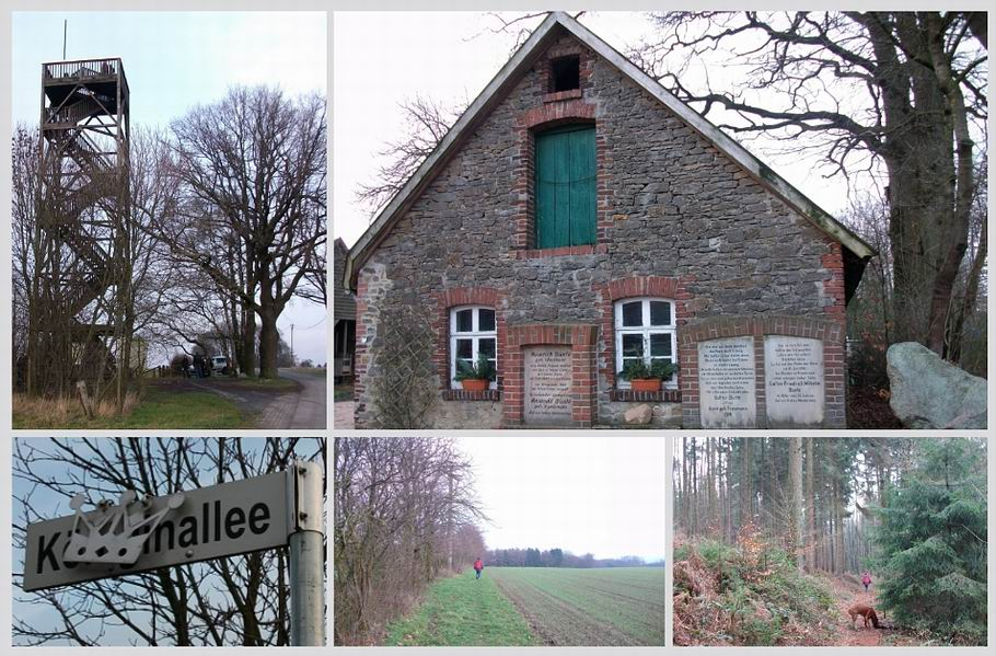Ostercappeln/Venne: Wanderweg 11 - Venner Aussichtsturm - Biohofladen