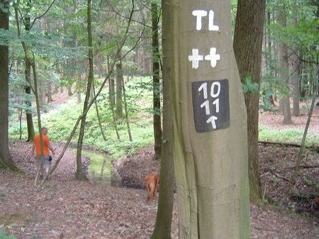 lienen wanderweg 10 wanderparkplatz schwarzer weg
