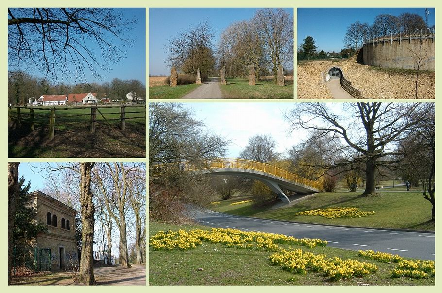 Osnabrück - Westerberg - Wasserwerk - Botanischer Garten