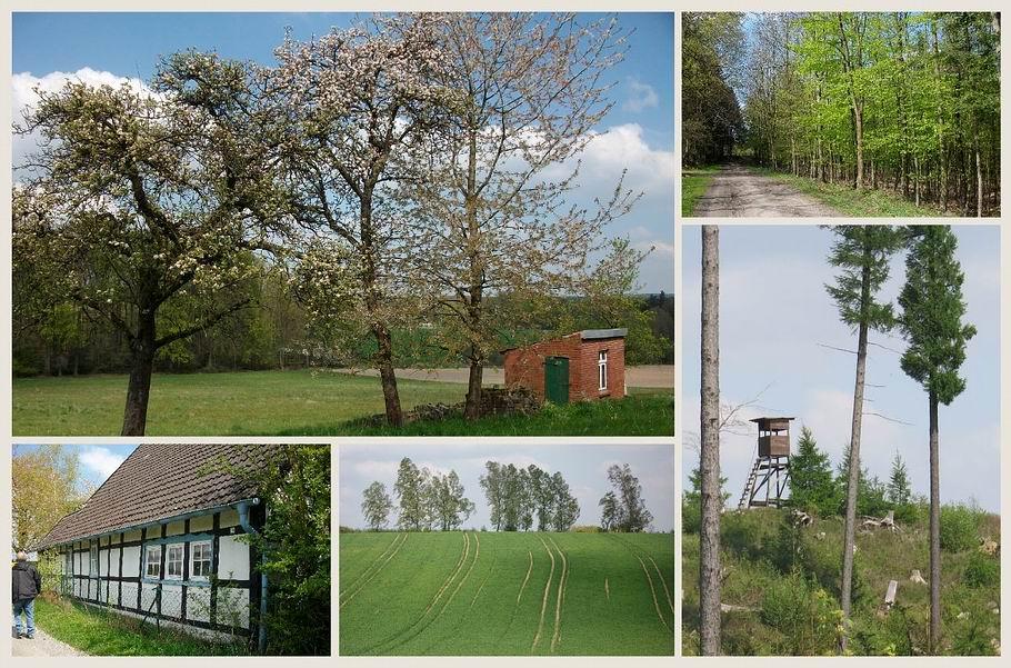 Melle - Rundwanderweg Huntequelle