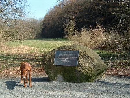 wandern bergfriedhof schledehausen