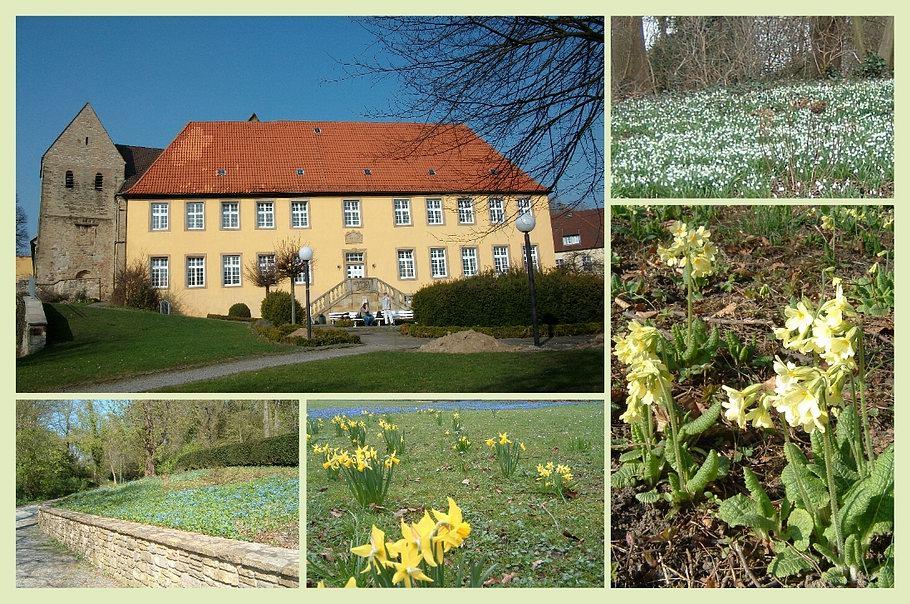 Kloster Gertrudenberg - Bürgerpark
