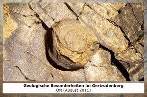 Gertrudenberger Höhlen - Geologische Besonderheiten im Gertrudenberg
