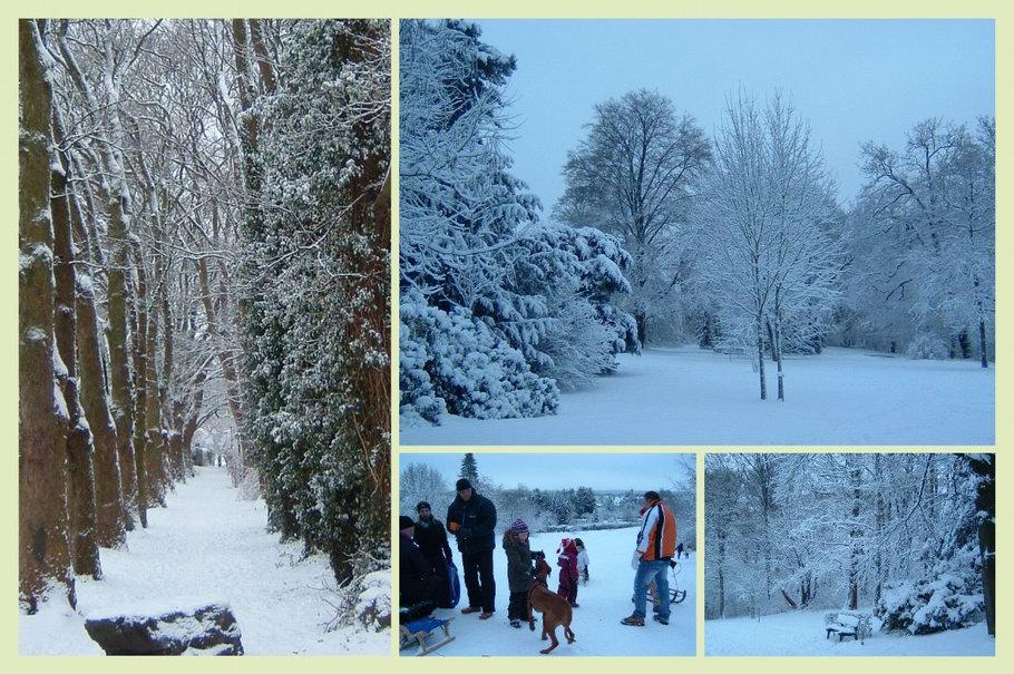Bürgerpark Osnabrück Winter