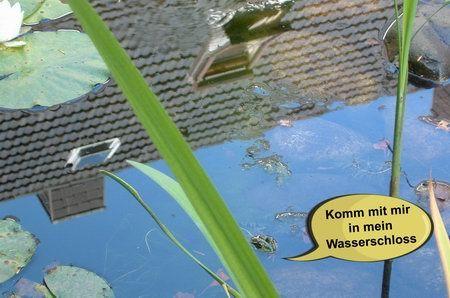 frosch im teich - komm mit mir in mein wasserschloss