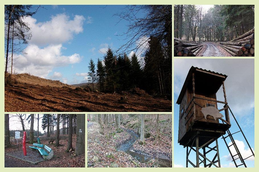 Bad Essen / Roter Pfahl - Wanderweg