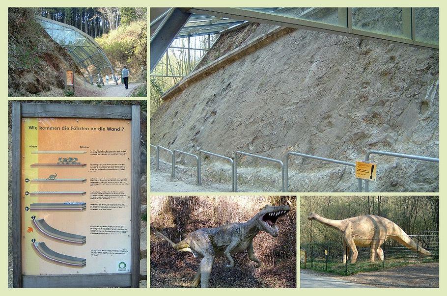 Bad Essen / Barkhausen - Dinosaurierfährten