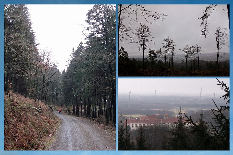 Bad Iburg / Ausblicke vom Dörenberg