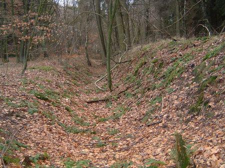 haltern bei osnabrück landwehr wandern