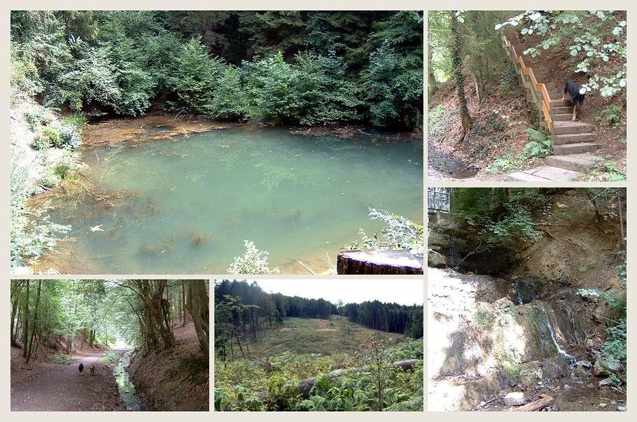 Melle-Buer / Grüner See mit kleinem Wasserfall
