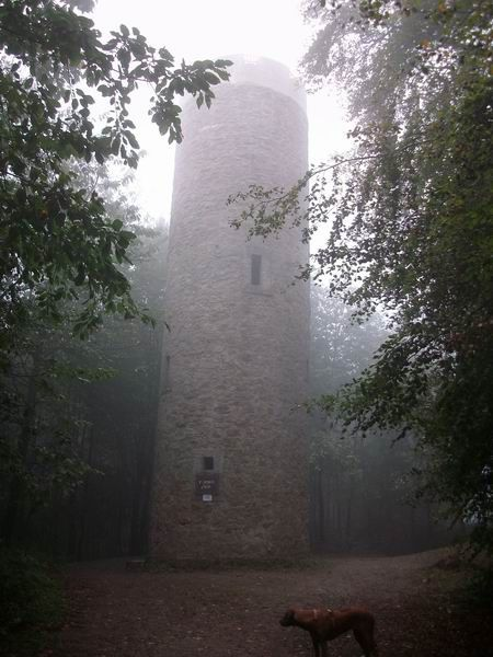 Rödinghausen Aussichtsturm Nonnenstein