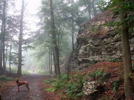 Rödinghausen Wanderweg zum Nonnenstein Wiehengebirgsquarzit