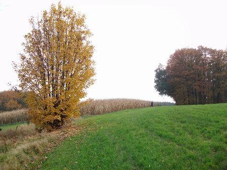 borgloher schweiz wanderweg A2