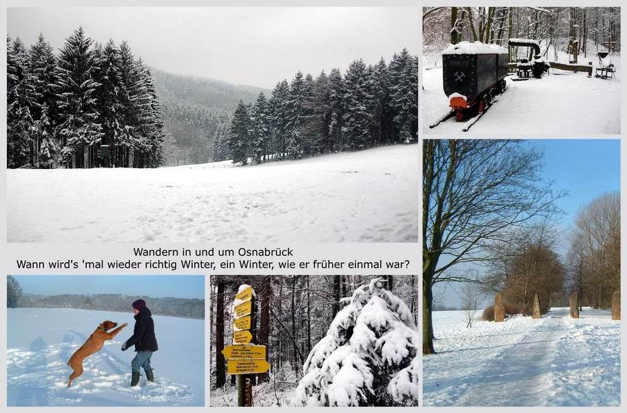 Wandern in und um Osnabrück - Winterimpressionen - Willkommenscollage 3