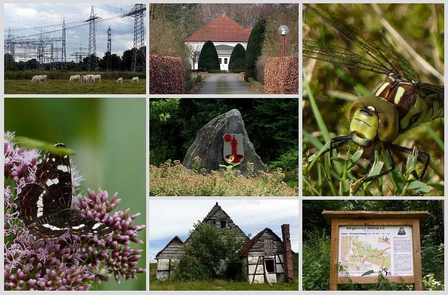 Radtour von Osnabrück zum Vokko-Rundwanderweg / Umspannwerk Lüstringen - Wasserwerk Düstrup - Wappen Voxtrup - Landkärtchen (Sommerform) - Libelle - Wandertafel