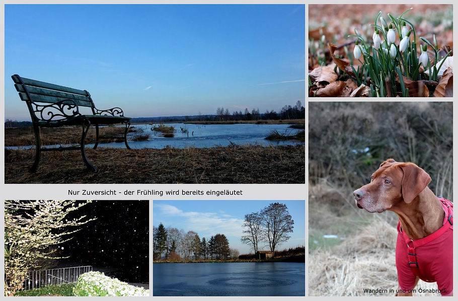 Wandern in und um Osnabrück - Hahnenmoor - Dratumer Fischteiche