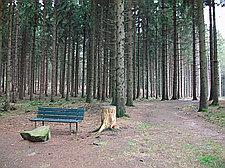 Georgsmarienhütte - ab Wanderparkplatz Achter de Welt