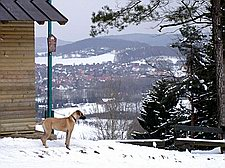 Hagen - Aussicht von der Almhütte