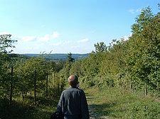 Lengerich - Wanderweg um den Dyckerhoff-Steinbruch