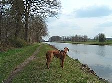 Wallenhorst/Hollage - Stichkanal