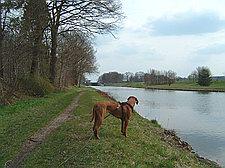 Wallenhorst/Hollage - Stichkanal