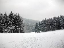 Wanderung Georgsmarienhütte - Varusturm - Bardenburg