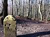 Dissen - Grenzstein auf dem Hankenüll
