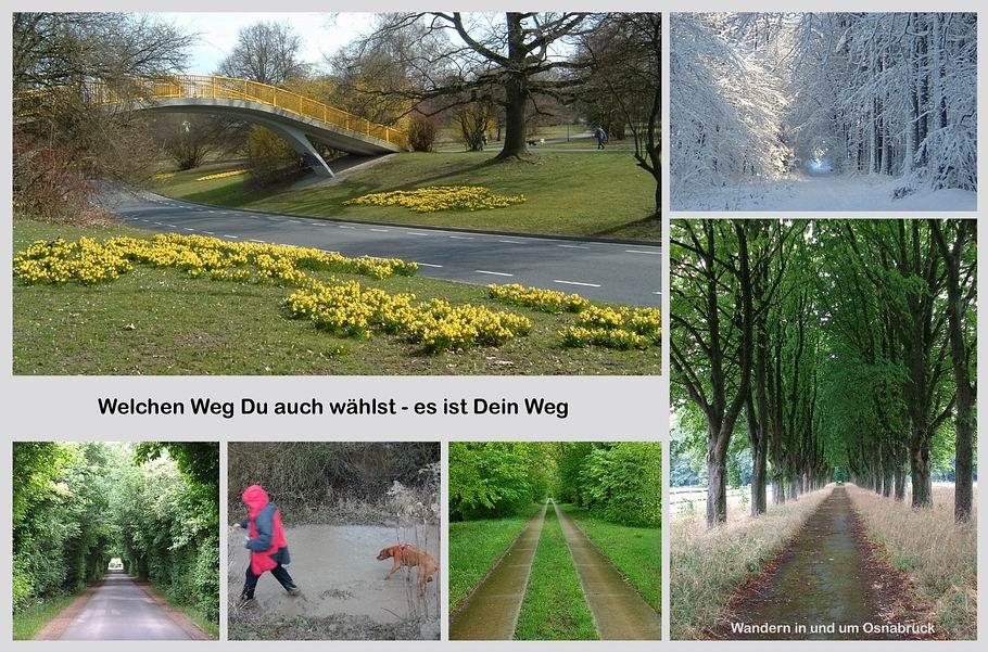 Wandern in und um Osnabrück - Willkommenscollage1
