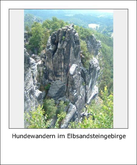 Hundewandern im Elbsandsteingebirge