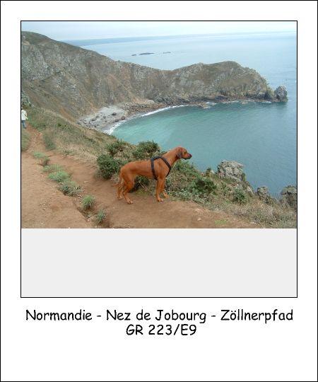 Normandie- Nez de Jobourg - Zöllnerpfad