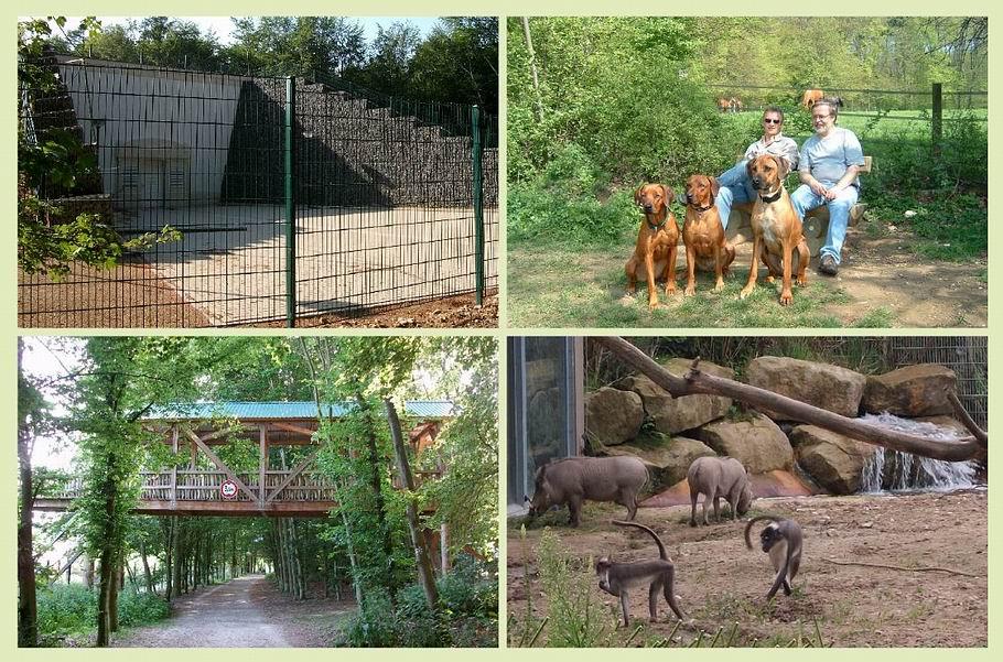 Wasserhochbehälter Schölerberg - Entalng des Zoos