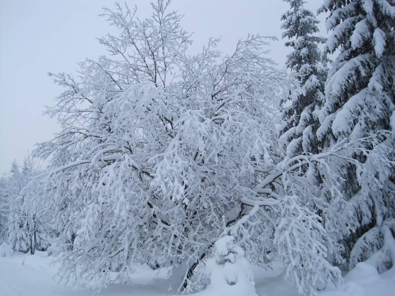 zeit ägypten winter