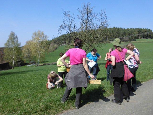 Kräuter-Wanderung um den Künstlerhof