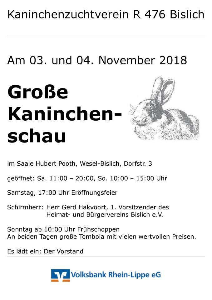 Plakat Lokalschau KZV R476 Bislich 3.+4.11.2018