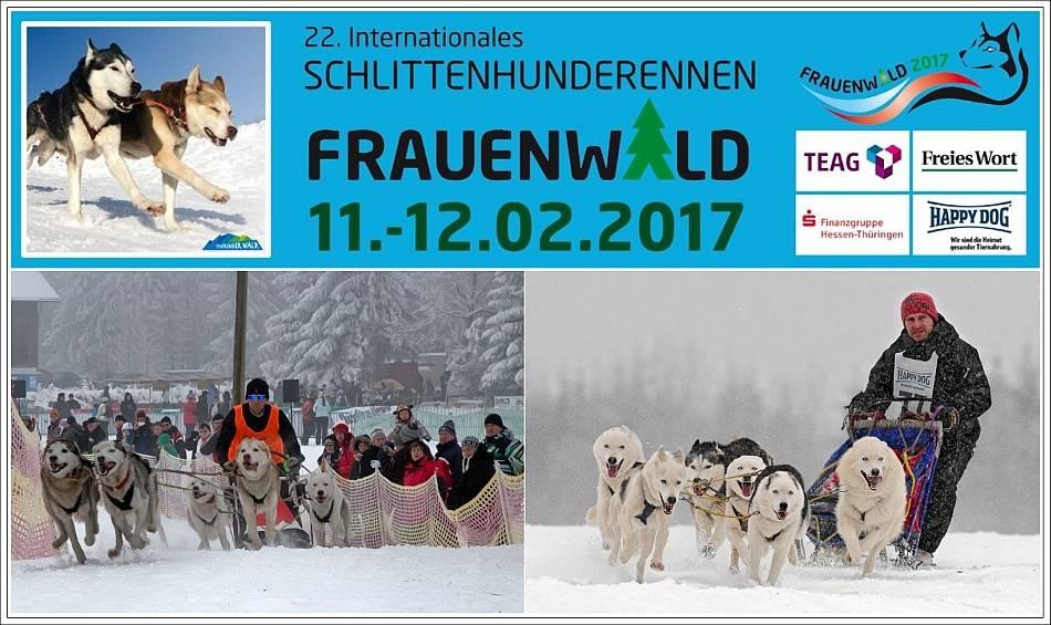 schlittenhunderennen frauenwald 2018
