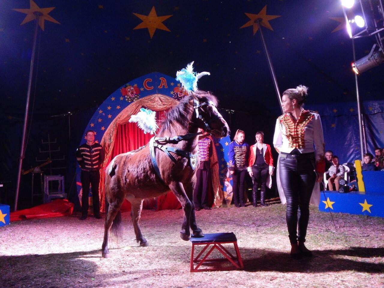 Circus Ascona
