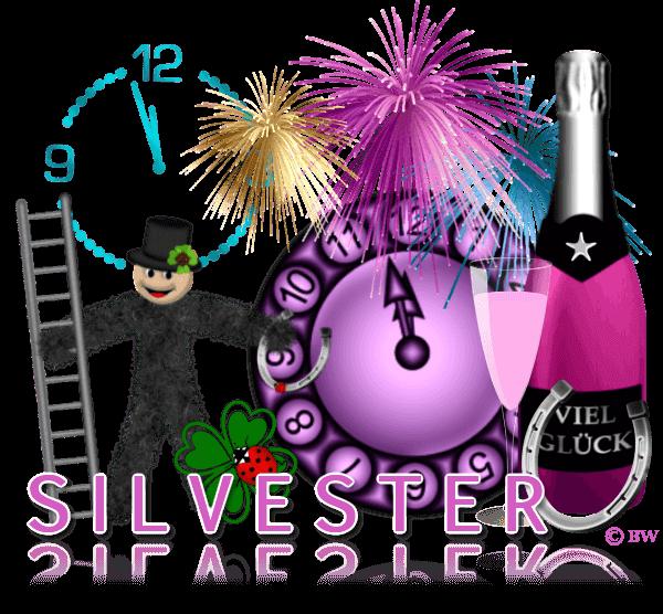 Silvester, Jahreswechsel, Happy New Year, gesundes neues Jahr, Prosit Neujahr, Glücksbringer, Schornsteinfeger, Marienkäfer, Kleeblatt, Feuerwerk, Uhr, Mitternacht, Sekt, Sektflasche, Sektglas, Hufeisen, Grafik, Clipart, Gif, kostenlos, gratis Download, mit Paint.net erstellt