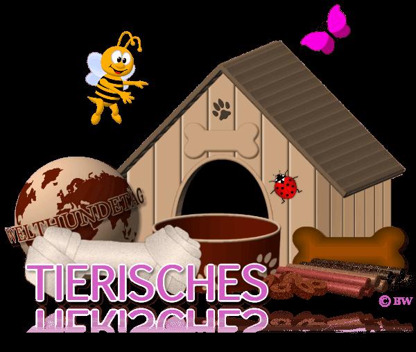 Tierisches, Hund, Katze, Zubehör, Hundehütte, Welthundetag, Biene, Grashüpfer, Marienkäfer, Leckerlis, Frisbee, Spieletau, Hundenapf, Fressnapf, Kauknochen, Grafik, Clipart, Gif, kostenlos, gratis Download, mit Paint.net erstellt