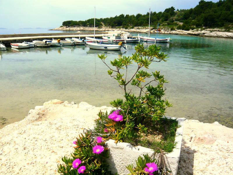 Urlaub mit Hund in Dalmatien - Kroatien