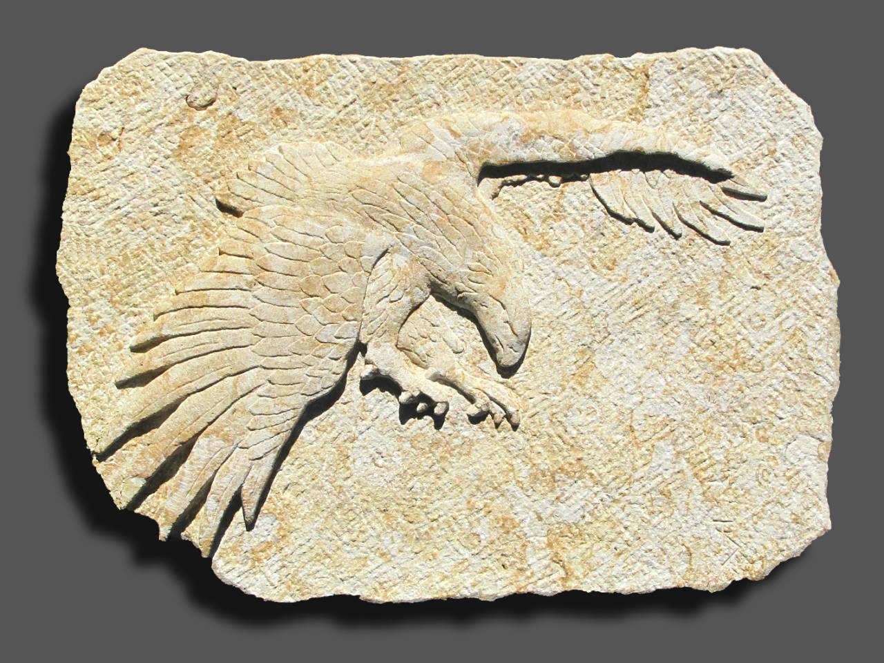 Adler im Flug, Sandstein