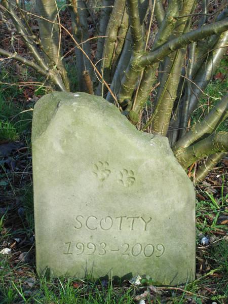 Bildhauer Frank Döhler, Gedenkstein für eine Katze, mit Inschrift, Sandstein
