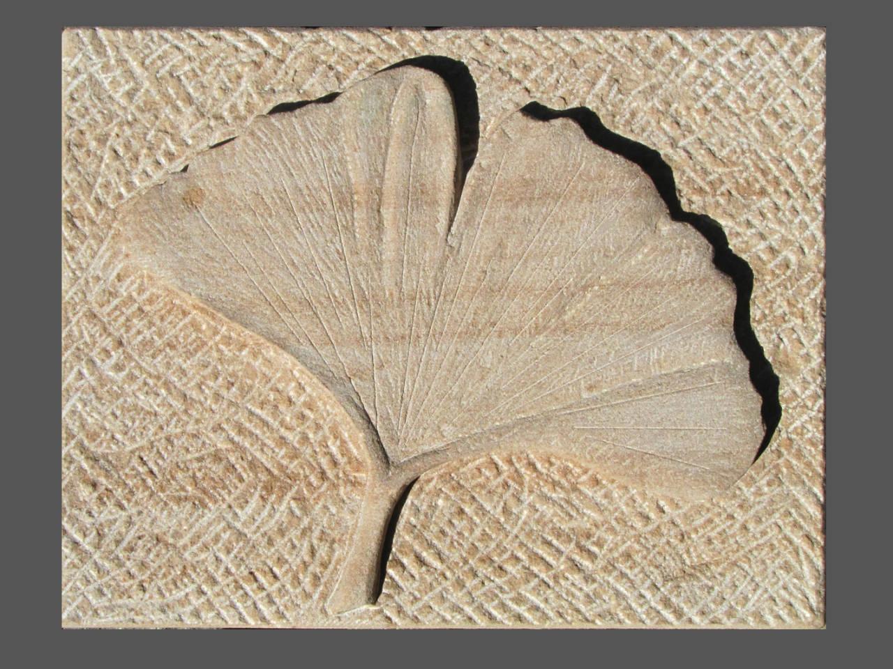 Relief Ginkgoblatt, Sandstein