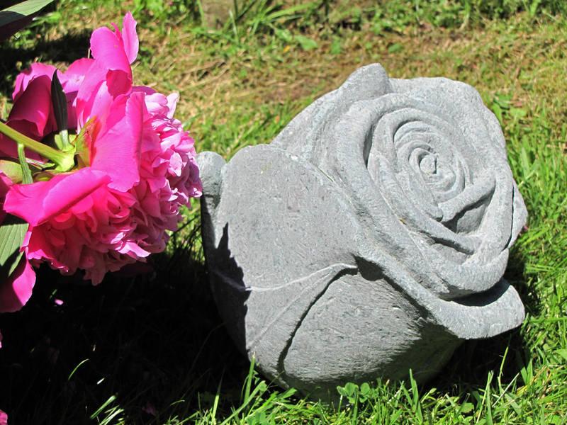Rosenblüte, Sandstein