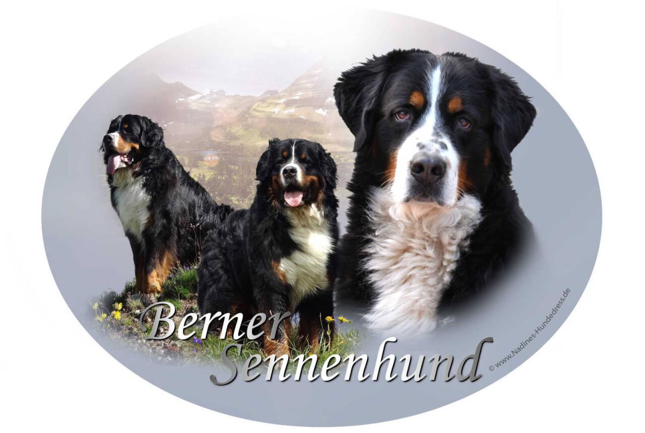 Aufkleber Berner Sennenhund Nadine's Hundedress
