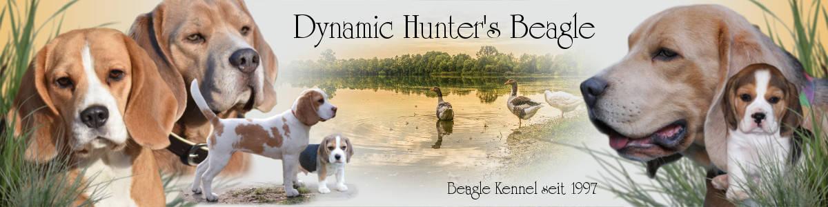 Beagle Banner Dynamic Hunter's Beagle