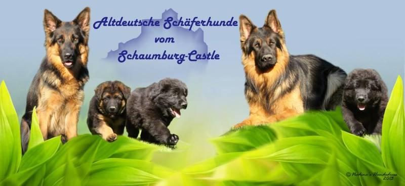 Nadines Hundedress