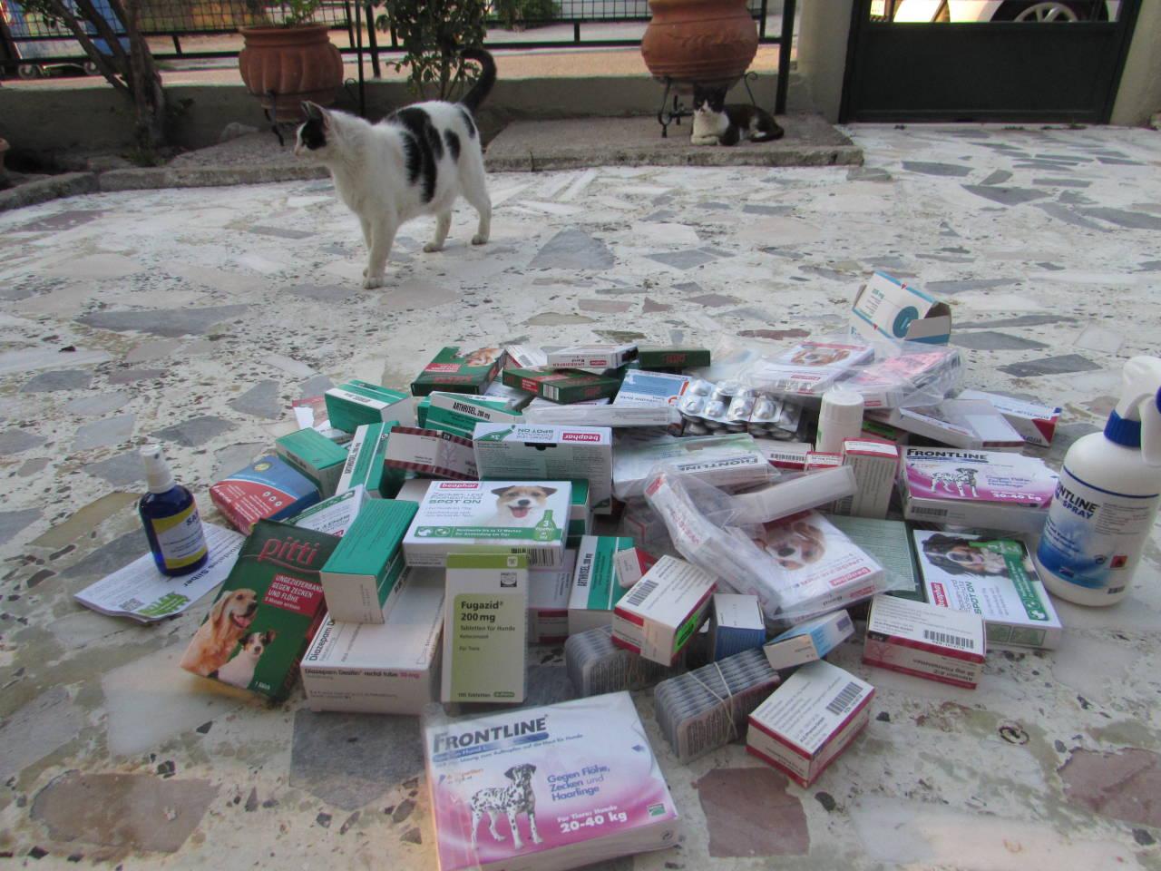 Übergabe der Antiparasitenmittel und Medikamete vor Ort in Patras