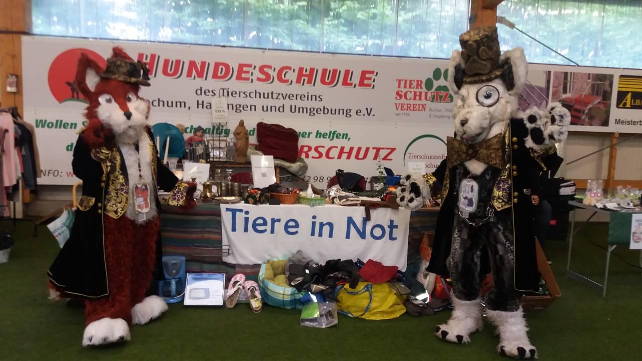 Unser Trödelmarktstand am Tierheim in Bochum Anfang Juli 2017