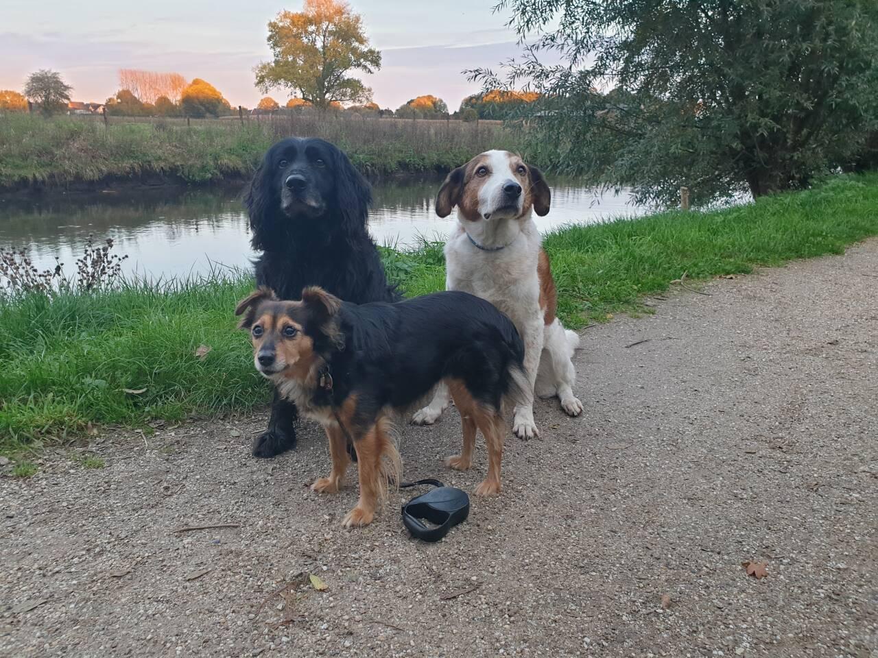 Unser Besuch in Wachtendonk im Oktober 2019