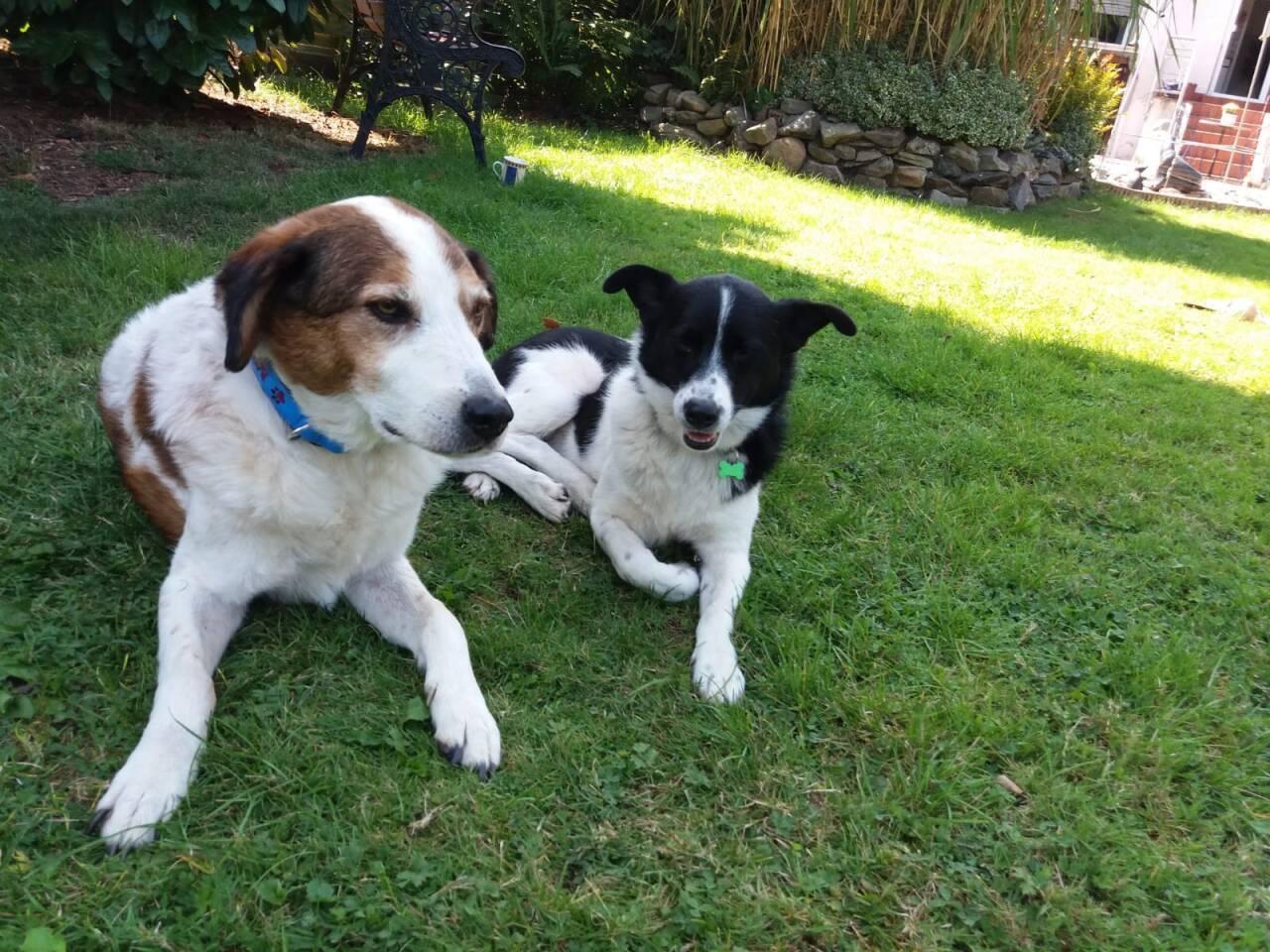Mia und Max